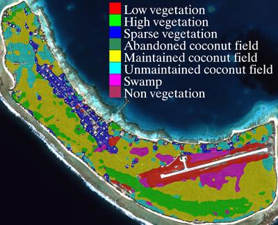 Classification Cocoteraie Tikehau